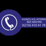 Acil veteriner hizmeti